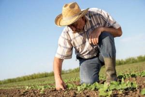 INSS suspende temporariamente exigências para o segurado rural